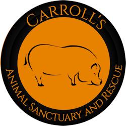 CARROLLS ASR
